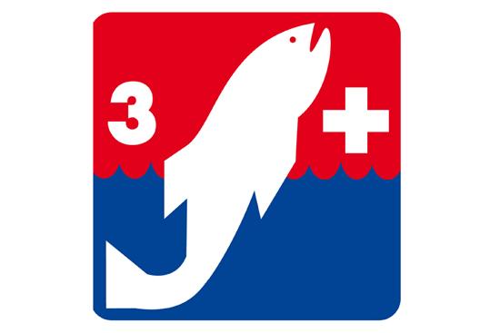 Bild von Jugendschwimmkurs Kombi 3